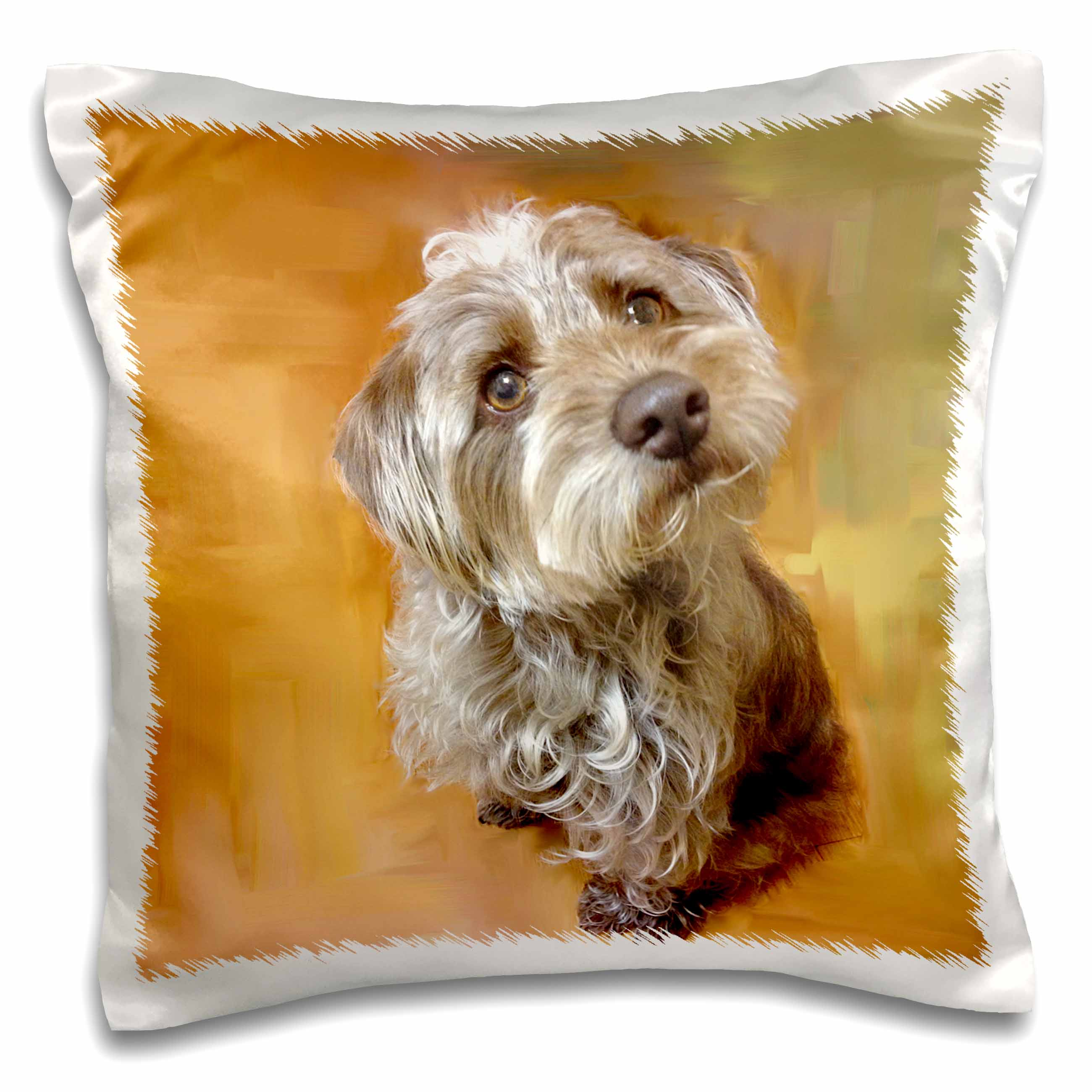 3dRose schnoodle brown silver, Pillow Case, 16 by 16-inch