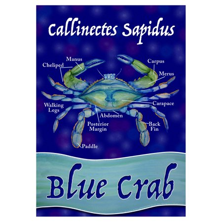 Crab Garden (Toland Home Garden Chesapeake Blue Crab Flag)