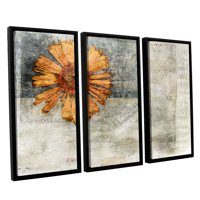 ArtWall Dried Flower Abstract by Elena Ray 3 Piece Wall Art