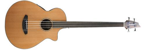 Breedlove Solo Jumbo Fretless Acoustic Electric Bass by