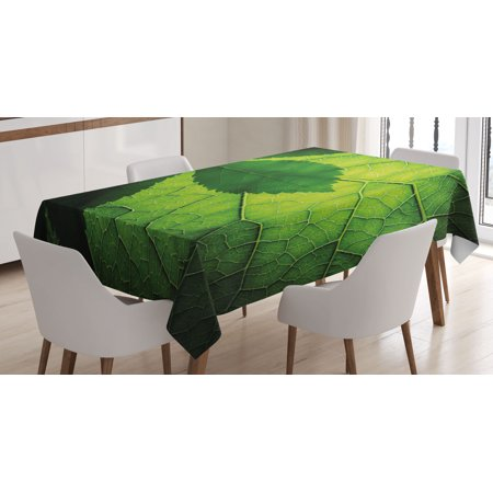 Green Decor Tablecloth  Nature Forest Big Amazon Brazilian Tree Leaf With Vein And Sunbeams Image  Rectangular Table Cover For Dining Room Kitchen  52 X 70 Inches  Olive Dark Green  By Ambesonne
