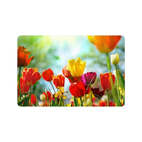MKHERT Beautiful Tulip Spring Flowers Doormat Rug Home Decor Floor Mat Bath Mat 23.6x15.7 inch