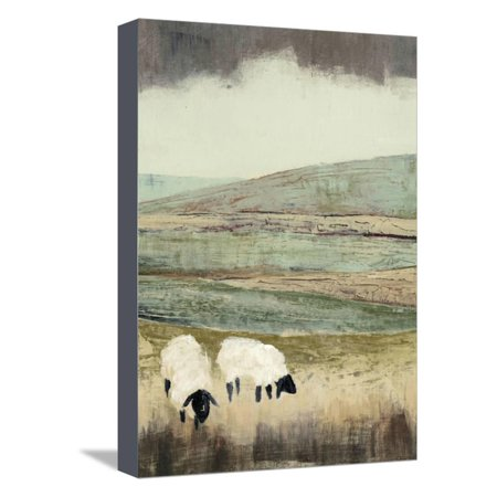 Meadow 2 Canvas (Open Meadow II Stretched Canvas Print Wall Art By Grace)