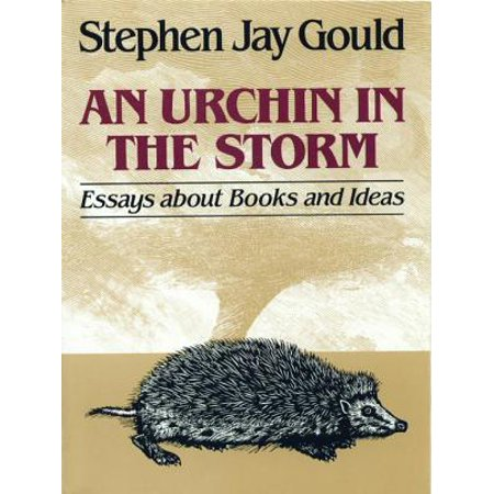 An Urchin in the Storm: Essays about Books and Ideas - eBook - Halloween Essay Ideas