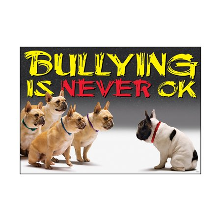 BULLYING IS NEVER OK ARGUS LARGE - No Bullying Posters