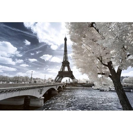 Another Look at Paris Eiffel Tower Photo Print Wall Art By Philippe Hugonnard