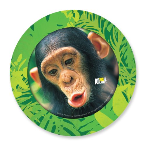 Primary Colors 7-Inch Animal Planet Party Plates, Set of 8 (878)