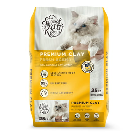 Special Kitty Premium Clay Cat Litter, Fresh Scent, 25 - Kitty Cat Gym