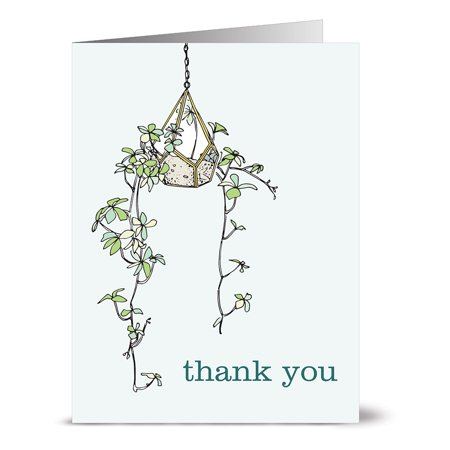 24 Thank You Note Cards - Hanging Vine Thank You - Blank Cards - Off-White Ivory Envelopes - No Thanks Halloween Vine