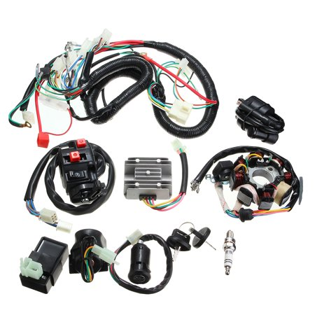 Electrics Wiring Harness Wire Loom ATV QUAD 125 150 200 250cc Stator CDI Coil (Electric Plastic Coil)