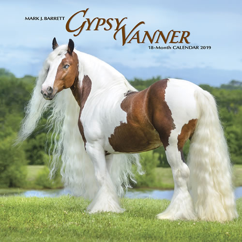 Willow Creek Press 2019 Gypsy Vanner Horse Wall Calendar