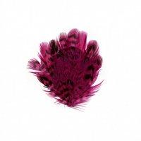ZUCKER™ Female Ringneck Small Pad - Shocking Pink
