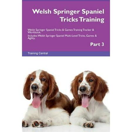 Welsh Springer Spaniel Tricks Training Welsh Springer Spaniel Tricks & Games Training Tracker & Workbook. Includes