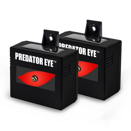Predator Eye Nighttime Outdoor Solar Animal Repeller - 2 Pack
