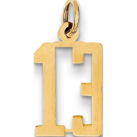 14k Yellow Gold Small Polished Elongated 13 Pendant / Charm - image 1 of 1