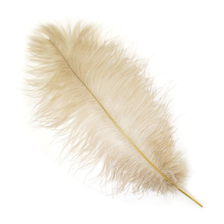 Beige Ostrich - Zucker Feather Products Ostrich Feathers Narrow - Tipless Drabs - Beige