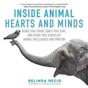 Inside Animal Hearts and Minds - eBook
