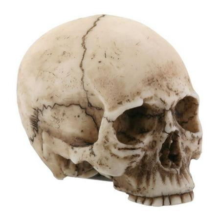 Small Human Skull Halloween Miniature Figurine 1.75 in](Small Halloween Figurines)