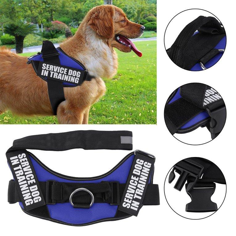 Service Dog Walking Harness Wire Center