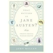 What Matters in Jane Austen? - eBook