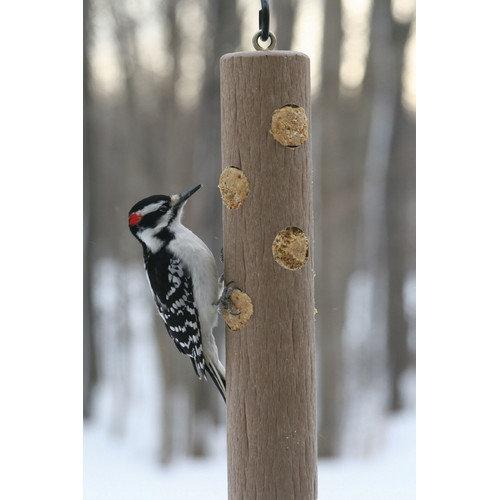 Birds Choice Suet Log Bird Feeder