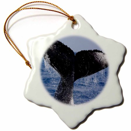 3dRose Hawaii, Big Island, Humpback Whale - US12 PSO0009 - Paul Souders - Snowflake Ornament, 3-inch