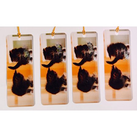 Kitten Playing With Mouse In Motion Set of 4 - Bookmarks with tassels For Kids (Bookmarks Women)