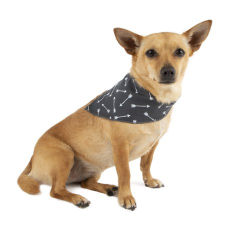 Simplydog Gray Striped Bandana & Bow Set for Dogs, Medium/Large
