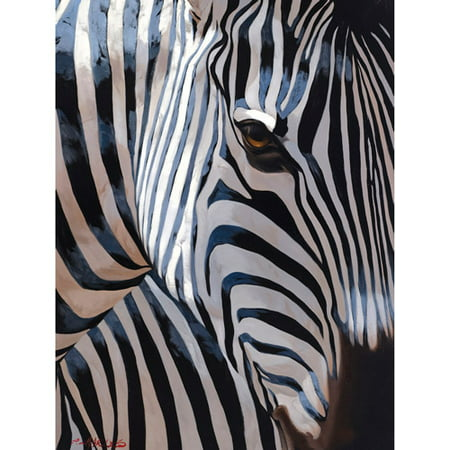 Zebra Stripes   22X28 Canvas Art