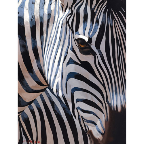 """Zebra Stripes"" 22x28 Canvas Art"