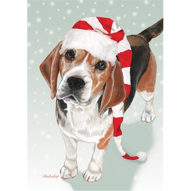 Pipsqueak Productions C720 Beagle Christmas Boxed Cards - Pack of 10