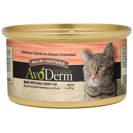 (24 pack) AvoDerm Salmon Consomme Cat Food, 3-Ounce, 24-Case