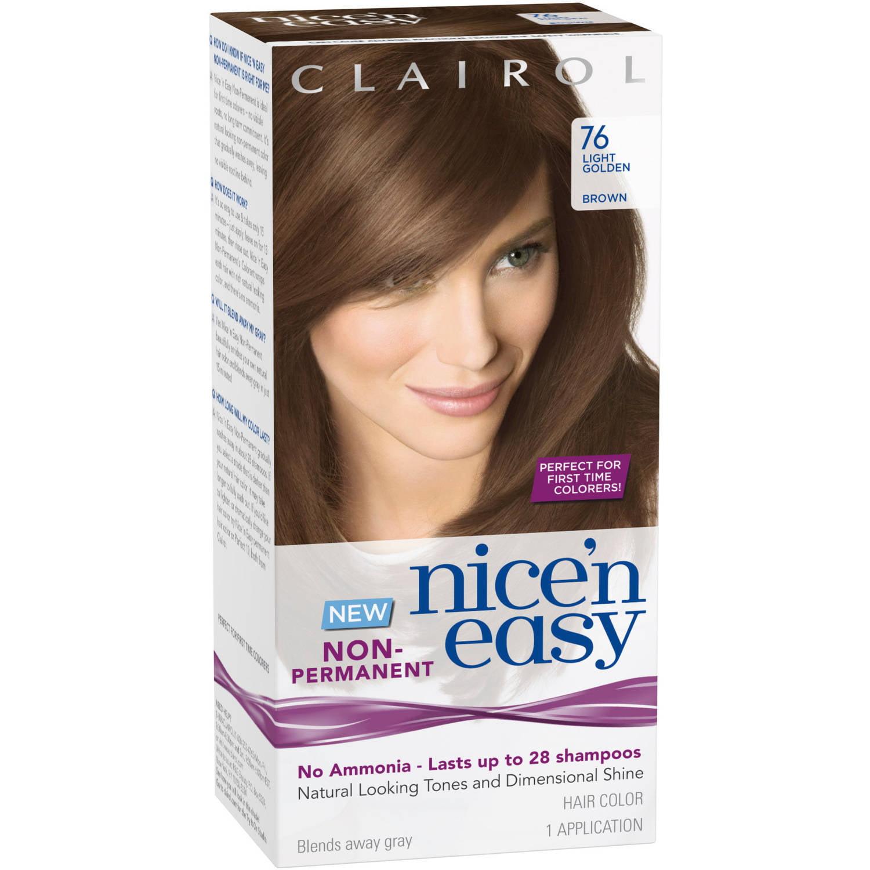 P G Nice N Easy Nice N Easy Non Permanent Hair Color 1 Ea