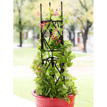 "Diamond Trellis, 47-1/4"" ()"