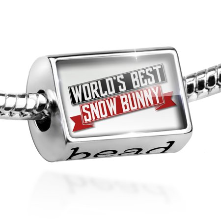 Bead Worlds Best Snow Bunny Charm Fits All European (Best Snow Resorts In The World)