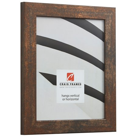 Craig Frames Bauhaus 125, Modern Rust Picture Frame, 20 x 27 Inch ...
