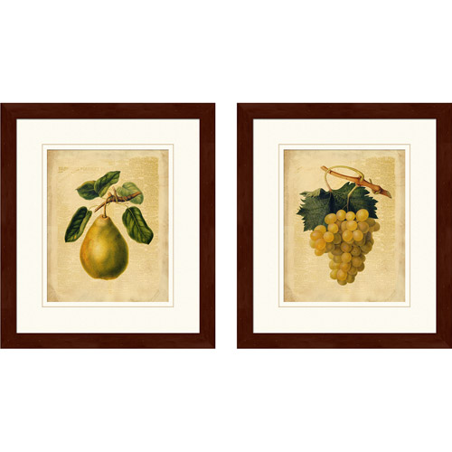 "PTM Images ""Pears & Grapes"" Framed Art, Set of 2"
