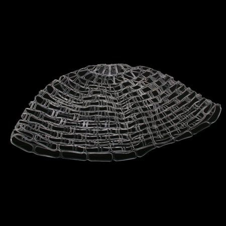 Rubber Fish (42.5 Inch Clear Replacement Net Fish Friendly Rubber Net for Fly Fishing Landing)