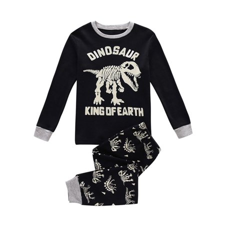 Baby Boys Girls Dinosaur Print Tops Pants Toddler Little Kids Outfits Pajamas Set Size:2Y - Childrens Dinosaur Outfit