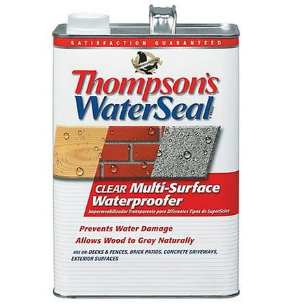 Thompsons WaterSeal Multi-Surface Waterproofer, Clear, 1-Gal