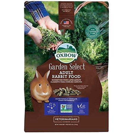 Garden Select Adult Rabbit 4