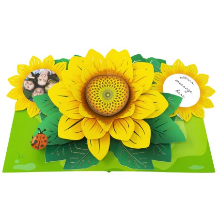 Paper Love Sunflower Pop Up Card, 3D Popup Greeting Cards, For Mothers Day, Fathers Day, Graduation, Spring, Birthday, Any Occasion | With Message and Photo