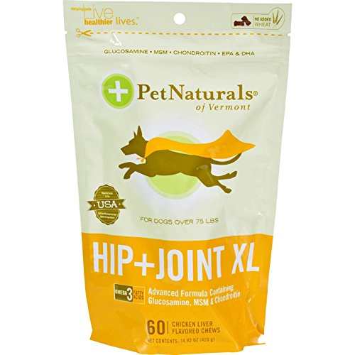 Hip & Joint XL chews (60 count) ( Multi-Pack)