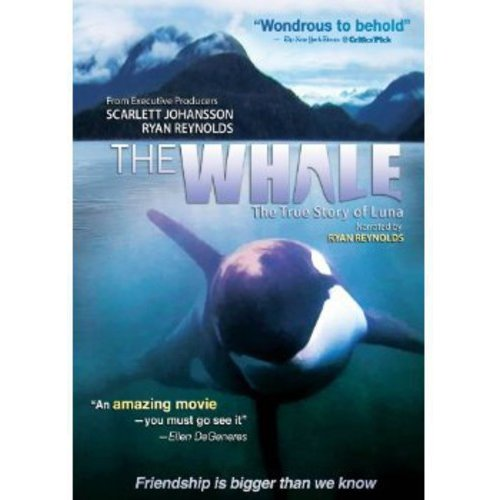 The Whale: The True Story Of Luna