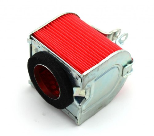 Air Filter for Tank Touring 250 250DE NST 250cc Scooter Moped New by SPU