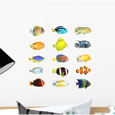 Great Collection Tropical Fish Wall Decal by Wallmonkeys Peel and Stick Graphic (12 in H x 12 in W) WM195682 ()