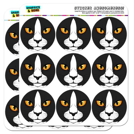 - Black White Cat Face Pet Kitty 2