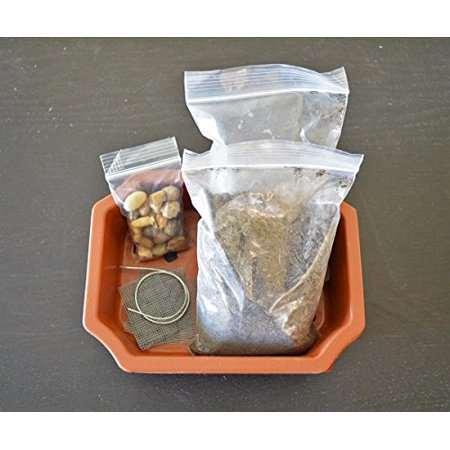 "Bonsai Potting Kit, 6.25"" Bonsai Pot Included"
