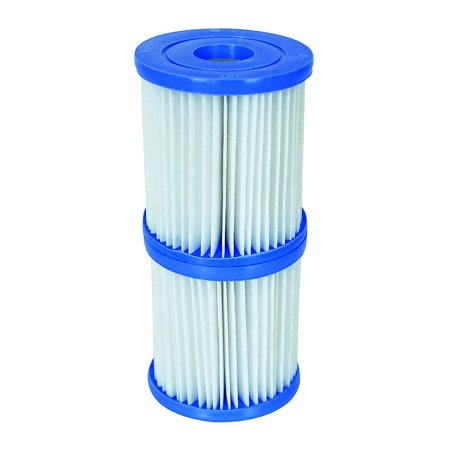 Type V Filter CartridgesDOES NOT FIT Model 58145 Bestway Flowclear filter pump By (Best Way To Become A Model)