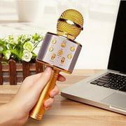 Taykoo WS-858 Bluetooth Wireless Karaoke Handheld Microphone,USB KTV Player Bluetooth Mic with Carring bag